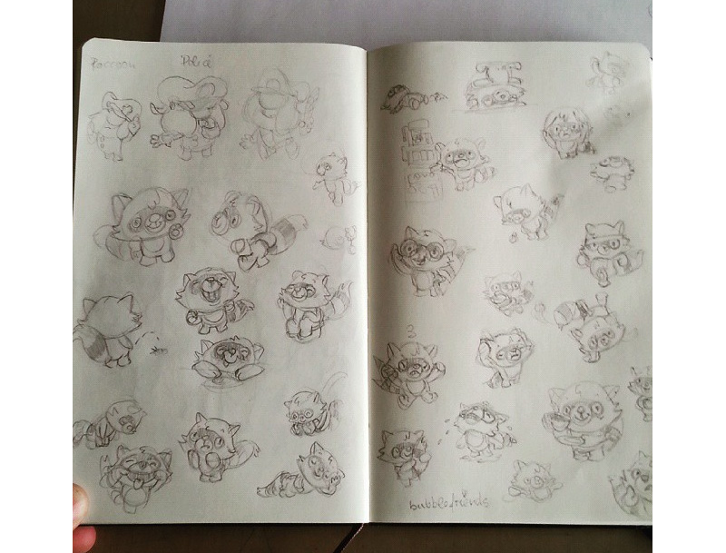 raccoon_sketchbook